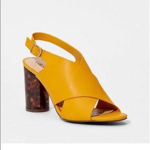 Mustard mule with tortoise heel